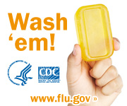 Wash your hands with soap and clean running water. Visit www.flu.gov for more information.