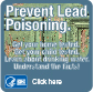 Prevent Lead Poisoning Button. (83 x 83)