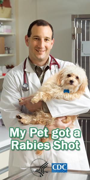 My Pet got a Rabies Shot
