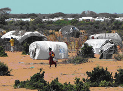 Make-shift shelters serve as homes for refugees in Dadaab refugee camp in Kenya
