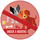 Illustration of two puppies under the age of 4 months. Image has a slash through it, meaning puppies under 4 months old are not allowed.