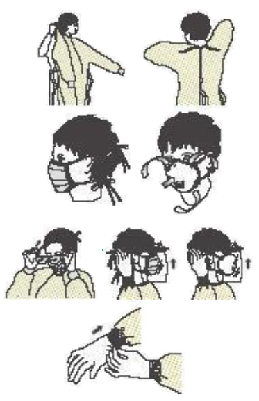 Illustration of safe donning of personal protective equipment (PPE) described in the text.