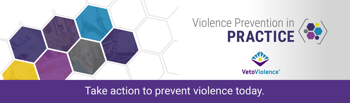 Violence Prevention in Practice
