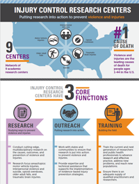 ICRC Infographic thumbnail