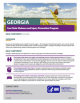 Georgia Core State Violence and Injury Prevention Program