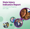 State Injury Indicators Report: Instructions for Preparing 2010 Data cover