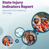 State Injury Indicators Report: Instructions for Preparing 2011 Data cover