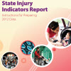 State Injury Indicators Report: Instructions for Preparing 2012 Data cover
