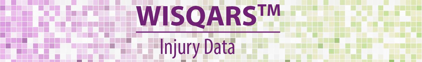 WISQARS - Injury Data