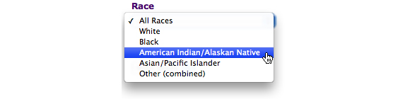 This image shows the options for Race. In this example, American Indian/Alaska Native is selected.