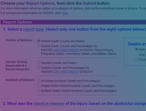 National Violent Death Reporting System (NVDRS)