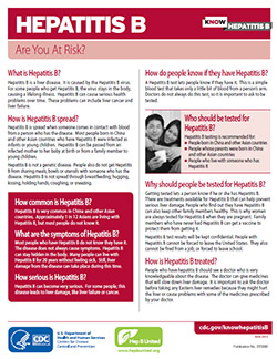 Snapshot of 'Hepatitis B: Are you at Risk' fact sheet