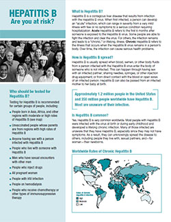 Snapshot of 'Hepatitis B: Are you at Risk' 2-page fact sheet