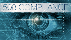 Human eye with binary technology and text label 508 Compliance