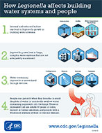 How Legionella Affects Building Water Systems and People Infographic