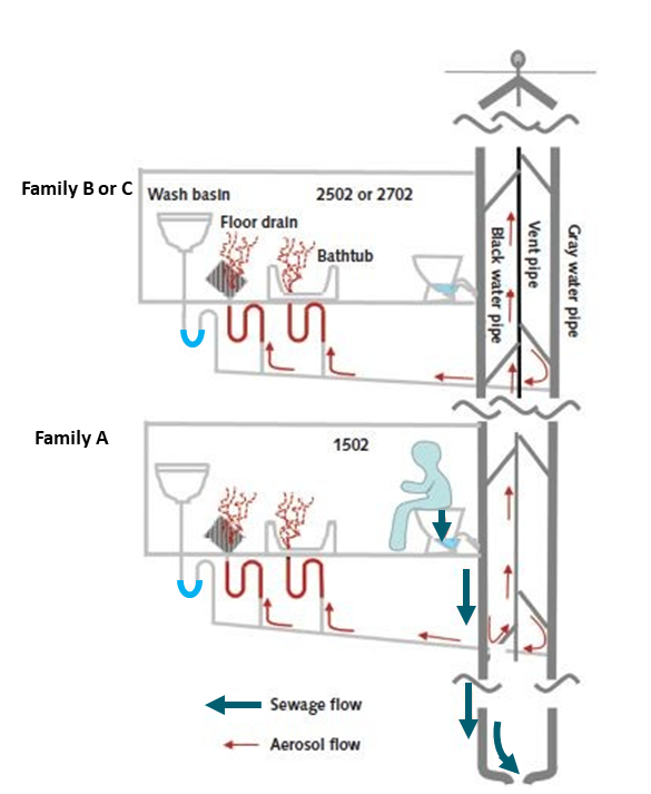 Suggested flow for sewage (thick arrows) and aerosols (thin arrows) through the drainage system. After toilet flushing, aerosols pass through U-trap with dried out water seals under floor and bathtub drains (but not through U-traps with water), and gas plumes containing bioaerosols escape into master bathrooms of vertically aligned apartments.