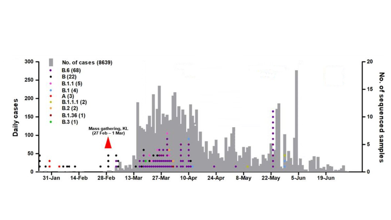 he number of virus samples sequenced from different individuals is on the right y-axis and colored by lineage