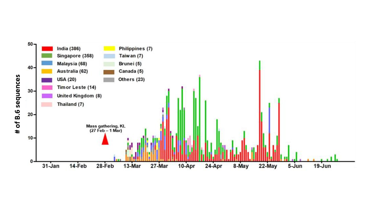 The number of B.6 lineage virus sequences per country as reported to a global database.