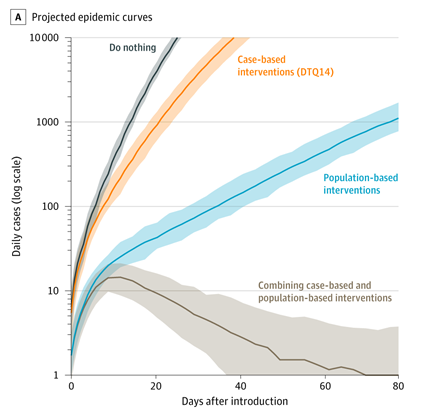 Chart showing projected epidemic curves under 4 scenarios