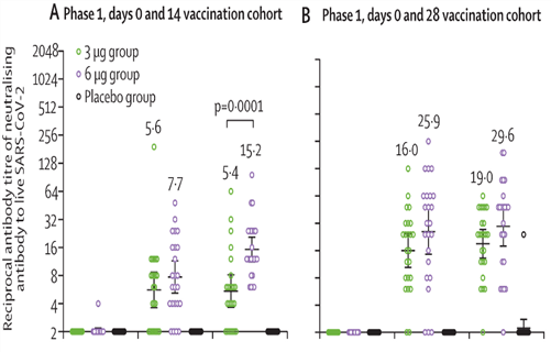 Titers of neutralizing antibodies after 3 µg or 6 µg doses of CoronaVac or placebo given on days 0 and 14 and days 0 and 28 in the phase 1 trial