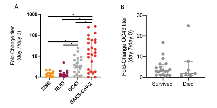 A Fold change in IgG titer against S protein from seasonal human coronaviruses 229E, NL63, and OC43, and SARS-CoV-2 from Day 0 to Day 7 after hospitalization (p less than 0.04). B Fold change in OC43 S-reactive antibodies in patients who survived or died by day 28 of hospitalization