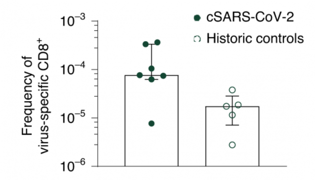 CD8+ T cell responses in convalescent  SARS-CoV-2 patients and historical controls