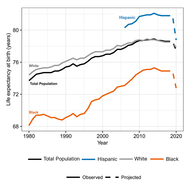 Chart, line chart of life expectancy by race/ethnicity.