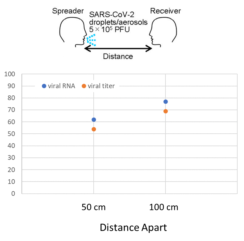 Percentage reduction of viral titer and viral RNA by distance from spreader to receiver compared with 25 cm.
