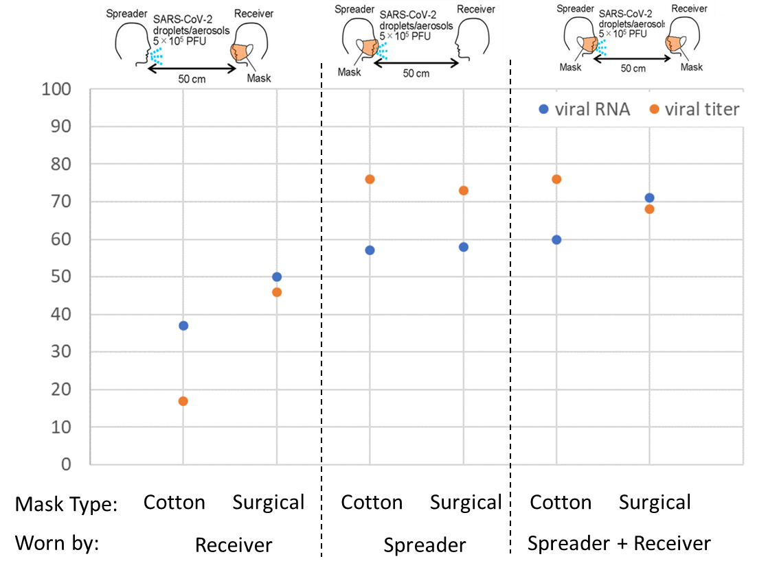 "Percentage reduction in viral titer and viral RNA with cotton or surgical masks worn by ""receiver"" alone, ""spreader"" alone, or both ""receiver"" and ""spreader"", compared with no masks."