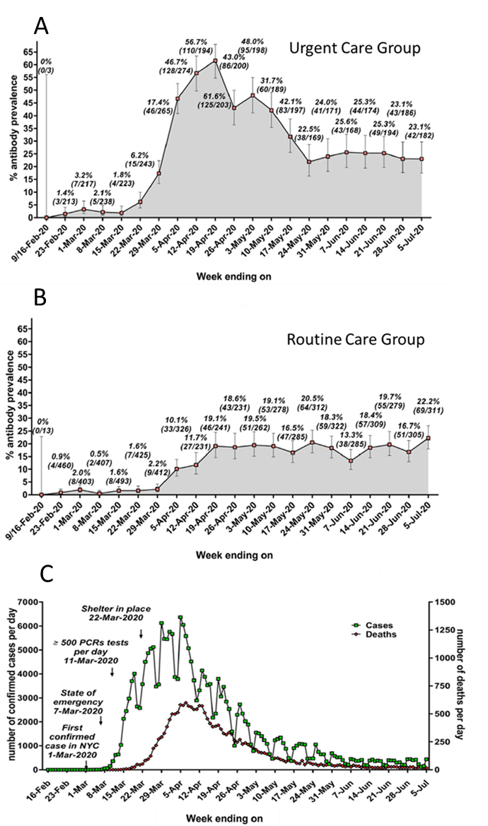 Serum antibody prevalence in the UC group, A, and in the RC group, B, and number of confirmed cases/day and number of deaths per day, between February and July 2020 ,C.