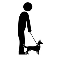 Illustration of an elderly person with a dog