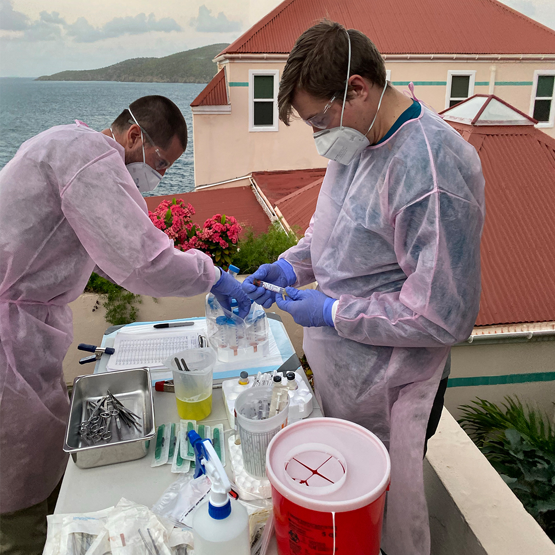 LLS fellow collaborates with an EIS officer in a field lab in the U.S. Virgin Islands.
