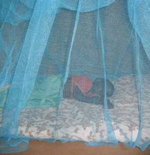 Image of an infant sleeping under a bed net.