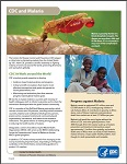 CDC's Malaria Program
