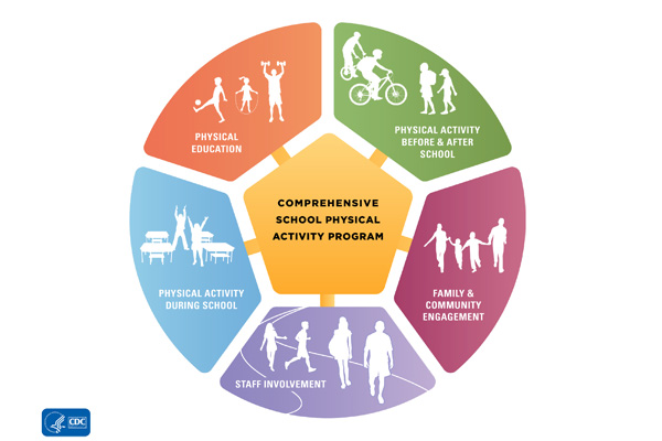 infographic: a diagram depicting the components of a comprehensive school physical activity program.