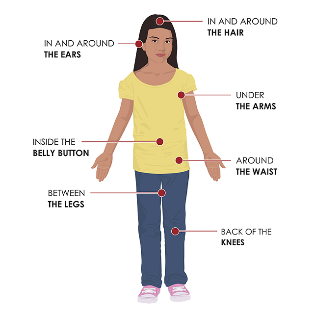 chart of a girl and where to check for ticks