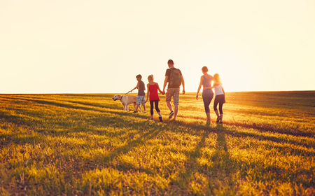 The figure shows a family with a dog walking in a field at sunset.