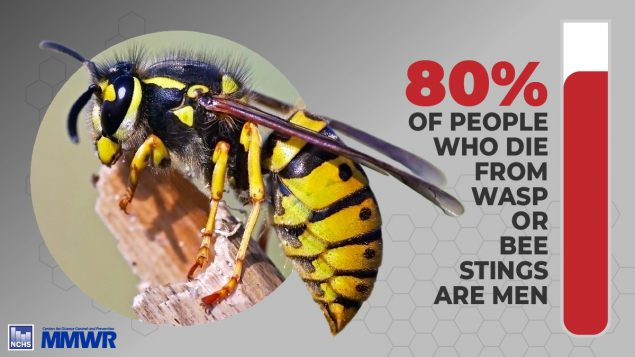 The figure shows a percentage of people who die from wasp or bee stings