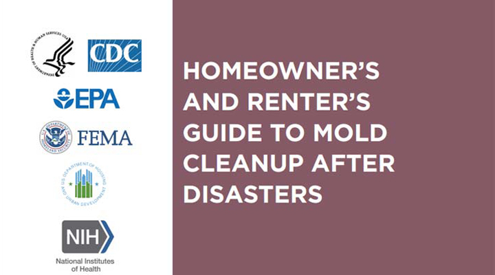 title page from mold cleanup guide for homeowners and renters