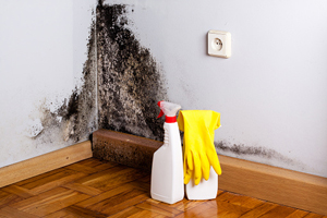 cleaning products and rubber gloves in a moldy corner of a room