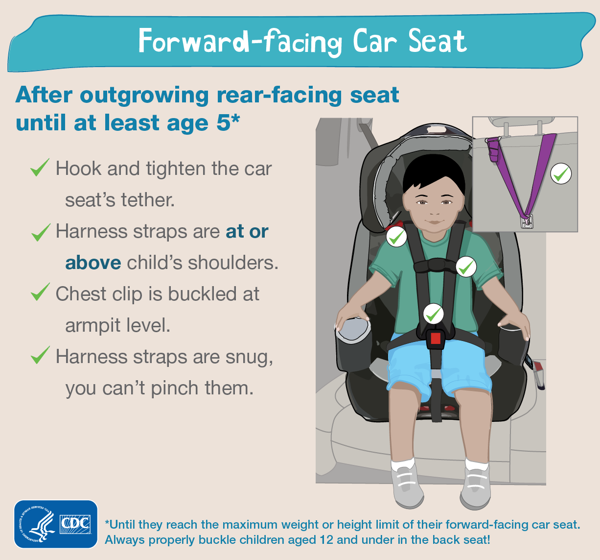 Forward Facing Car Seat Straps