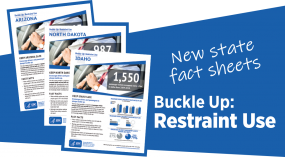 restraint-fact-sheet-thumbnail-non-branded