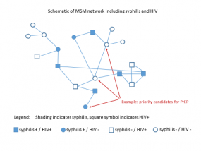 Graphic showing a Schematic of MSM network including syphilis and HIV