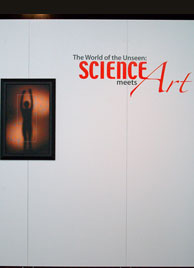 Science Meets Art
