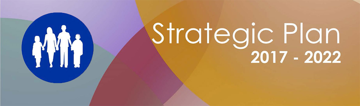 NCBDDD Strategic Plan 2017 - 2022