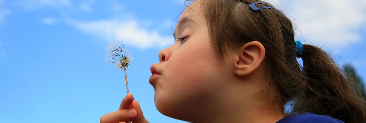 Young girl with down syndrome blowing on a dandelion