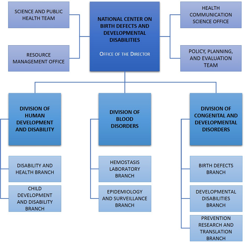 Cdc Says Developmental Disabilities Are >> Organizational Chart About Us Ncbddd Cdc