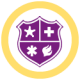 Icon: public safety shield