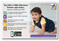 Milestone Tracker Flyer