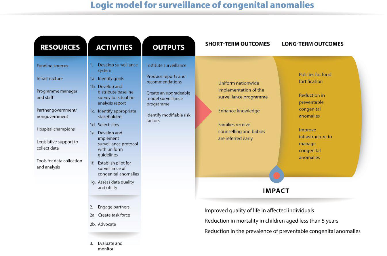 Fig. 2.1. Logic model for surveillance of congenital anomalies